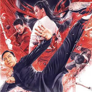 Recensione dvd Ip Man – Kung Fu Master