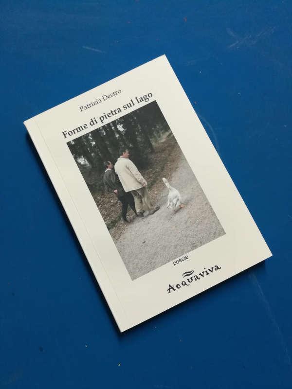 """Recensione libro """"Forme di pietra sul lago"""", di Patrizia Destro"""